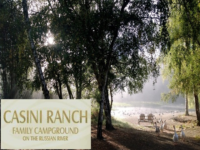 Casini ranch with logo