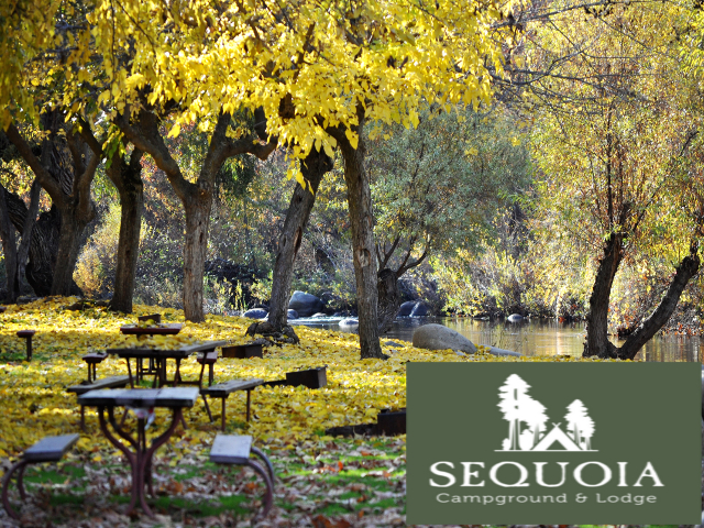 Sequoia Campground And Lodge. Click for details about this park and see their personal website!