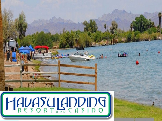 Havasu Landing Resort. Click for details about this park and see their personal website!