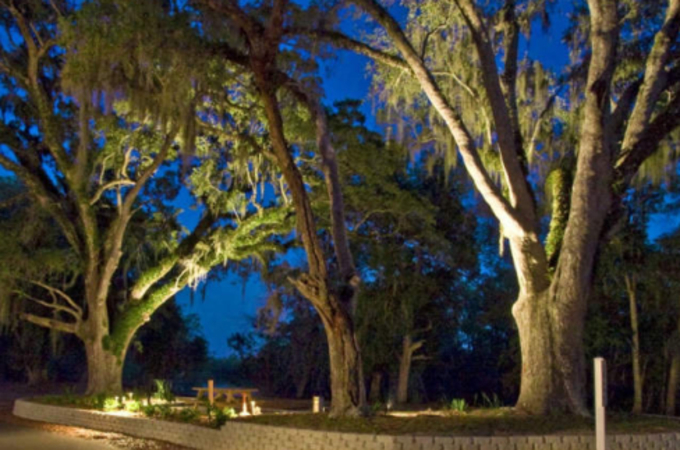 live oak landing camping in florida