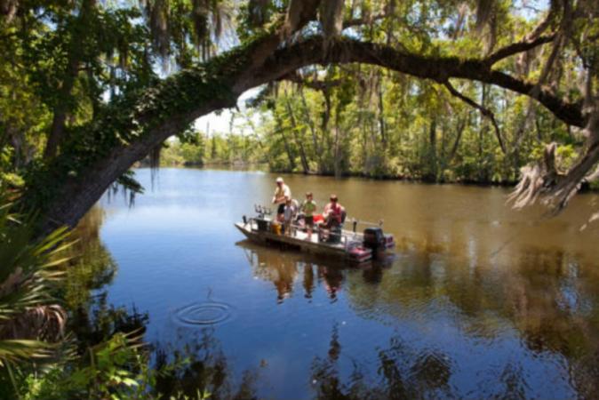 pontoon at live oak campground in fl