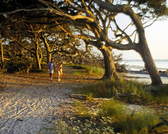 Jekyll Island Campground Bookyoursite