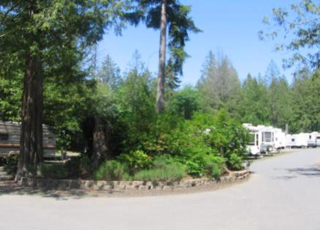 Rv Park Bainbridge Island